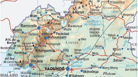 Detailed map of Cameroon